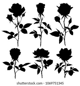 Roses Silhouettes. Set of vector silhouettes on white background