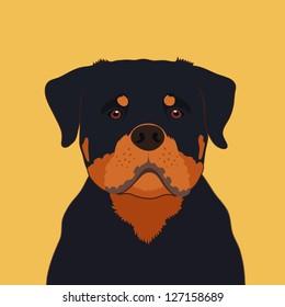 Rottweiler, The buddy dog