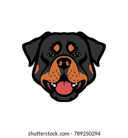 Rottweiler dog - vector illustration