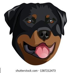 Rottweiler illustration vector on white background