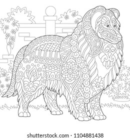 Rough Collie dog. Shetland Sheepdog or Sheltie. Coloring Page. Colouring picture. Adult Coloring Book idea. Freehand sketch drawing. Vector illustration.