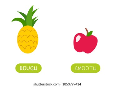 ROUGH and SMOOTH antonyms word card vector template. Flashcard for english language learning. Opposites concept. Different surface types like example pineapple and apple