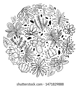 Round composition with houseplants, cactuses and succulents. Vector hand drawn outline sketch illustration black on white background