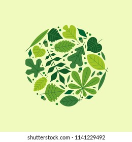 Round composition from leaves of forest. Vector leaves icons set isolated on light background. Illustration of beech, chestnut, linden, oak, willow, birch, hawthorn, maple, hornbeam, ash-tree leaf.