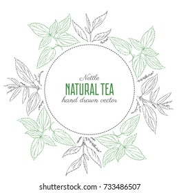 Round floral frame, Nettle wild field flower isolated on white background, hand drawn sketch vector illustration Urtica dioica for design package tea, cosmetic, natural medicine, decorative label