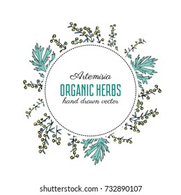 Round frame with Artemisia vulgaris, wreath common wormwood hand drawn vector illustration isolated on white, Also called absinthium, absinthe wormwood, sagebrush herb, mugwort plants for design cover