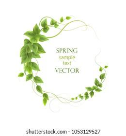 Round frame. leaves ,vector