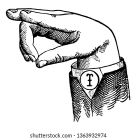Round Mixed Wide High Vowel positions are distinguished by always having the voice phalanx of the thumb accented and in contact with the terminal phalanx of the accented finger, vintage line drawing