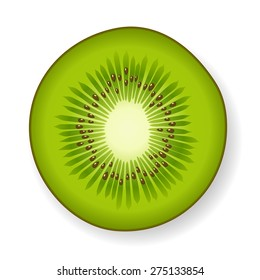 Round section of a tropical green fresh juicy kiwi fruit with visible seeds and core, isolated with shadow on white, vector illustration