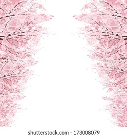 Rows of Beautiful Cherry Blossom trees.File contains Clipping mask, Gradients.