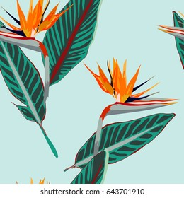 Royal Strelitzia. Tropical flowers, bird of paradise flower. Beautiful seamless vector floral jungle pattern background, exotic print