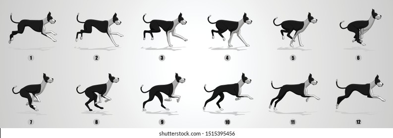 run cycle animation sequence, animation frames
