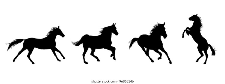 Running black horses with jumping horse on the white background