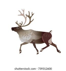 Running caribou reindeer. Vector illustration isolated on a white background