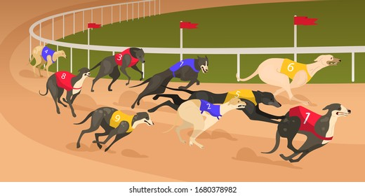 Running dog of different breed in coursing dress. Dog race concept. Sport dog running fast in speed competition. Vector illustration in cartoon style