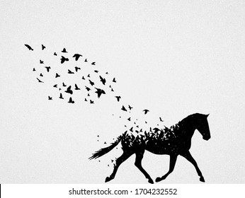 Running horse and flying birds. Endangered animal. Abstract silhouette