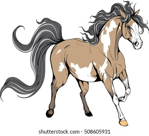 Running horse. The unusual coloring. Coloured Horse.