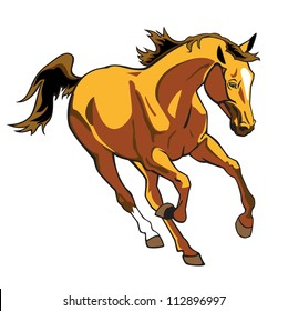 running  horse , vector picture isolated on white background,front view image