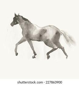 Running horse. Watercolor. Vector illustration.