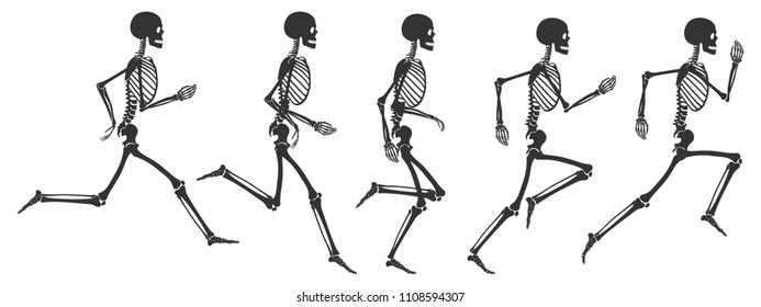Skeleton Images, Stock Photos & Vectors | Shutterstock