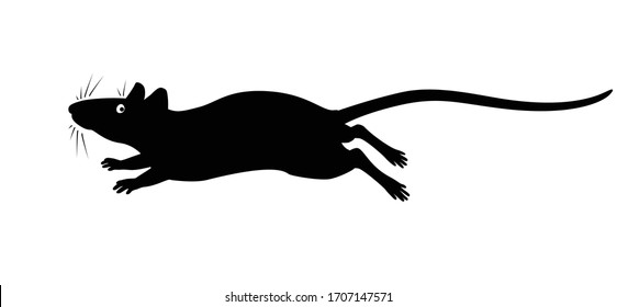 Running rat - vector silhouette for pictogram or logo. Silhouette of a rat or mouse galloping fast for a sign or icon. Running little rodent - black silhouette.