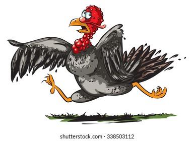Running turkey cartoon.