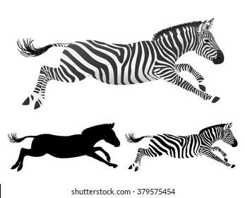Running Zebra. Side view. Isolated zebra on white background. Zebra set - volume, flat, silhouette. Vector illustration.