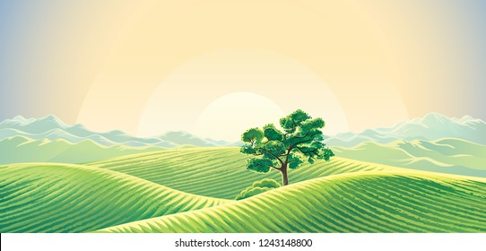 Rural dawn landscape with sown fields and a lonely tree and mountains background.
