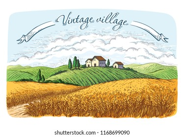 rural field with ripe wheat on background of mill, village and clouds. Color vector illustration