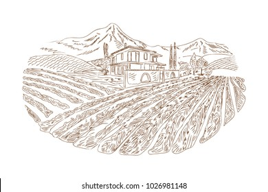 Rural house and wine yard sketch. Hand drawn in old sketch and vintage style for the label, wine label. Fields background and trees. The rural landscape of vineyard with rustic houses.
