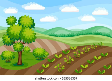 Rural landscape. Agriculture background