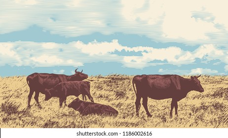 Rural Landscape With Cows. Hand Drawn Vector Illustration Engraving Style. aspect ratio 16:9