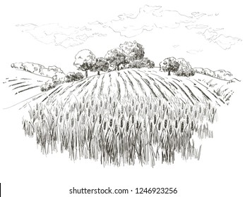 Rural landscape field wheat, Old Barn, house, trees, windmills, animals, cows, silage tower, plants, fences and other elements, forest panorama. Hand drawn vector Countryside engraving