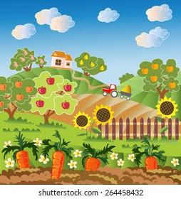 Rural landscape. Fruit garden, carrot, fence with sunflower. Red tractor, village house. Vector illustration.