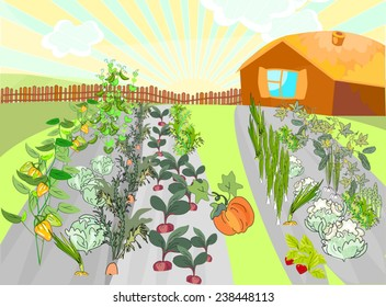 Rural landscape with garden