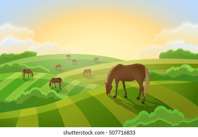 Rural landscape with  grazing horses. Farm with green fields.