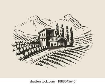 Rural landscape with villa, vineyard fields. Sketch vector illustration for label