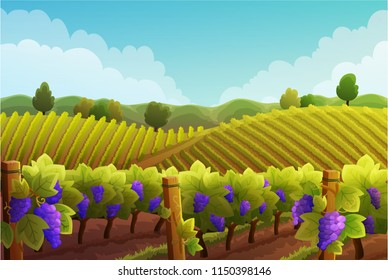 Rural landscape of vineyard. Vines with purple grapes stretching over the hills with trees and mountains in background. Autumn season. Vector illustration.