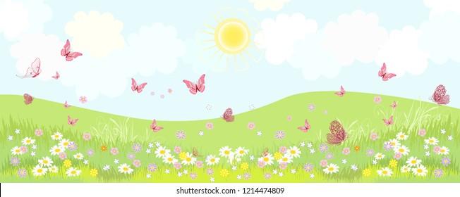 rural panorama with flowering meadow flowers