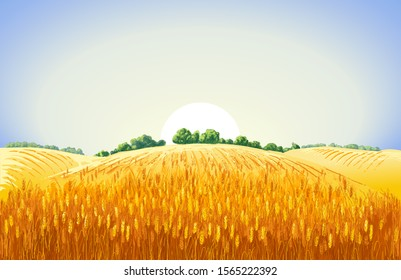 Rural summer landscape a field of ripe wheat on hills and dales in the background. A trees, plants, forest panorama. Hand drawn vector watercolor illustration.