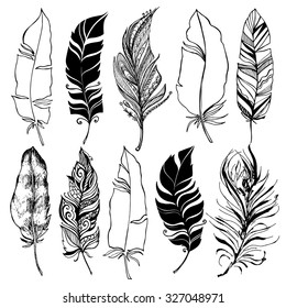 Rustic decorative feathers collection. Hand drawn vintage design set - vector illustration