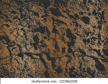 Rusty Scratch Abstract Background. Grunge Textures. Vector illustration.