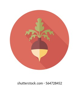 Rutabaga or Swede flat icon. Vegetable root vector illustration