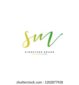 S M SM Initial letter handwriting and  signature logo concept design