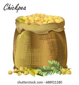 Sack of chickpeas. Hand drawn realistic vector illustration of jute sack with chickpeas, pods and leaves on white background