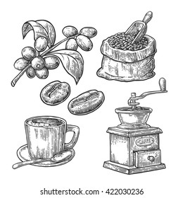 Sack with coffee beans with wooden scoop and mill, cup, branch with leaf and berry. Vintage drawn vector engraving illustration for shop. Isolated on white