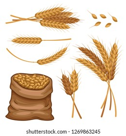sack of wheat ears and grains vector set graphic object illustration