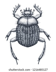 Sacred beetle of scarabs tattoo art. Dot work tattoo. Insect. Egyptian symbol of eternal life, resurrection, revival. Symbol of birth of new life. Black and white drawing