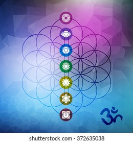 Sacred geometry abstract design, flower of life outline with main chakra symbols on gemetric low poly background. EPS10 vector.