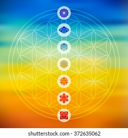 Sacred geometry Flower of Life design with seven main chakra icons over colorful blurred gradient background. EPS10 vector.